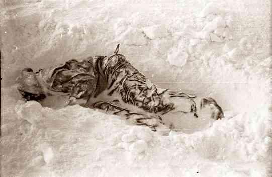 тело Зины Колмогоровой