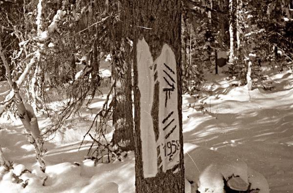 Мансийские знаки, с указанием года, оставлены, наверное, летом, геологами