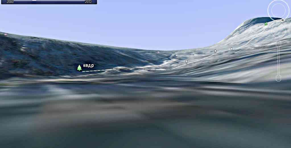Кедр - Google earth