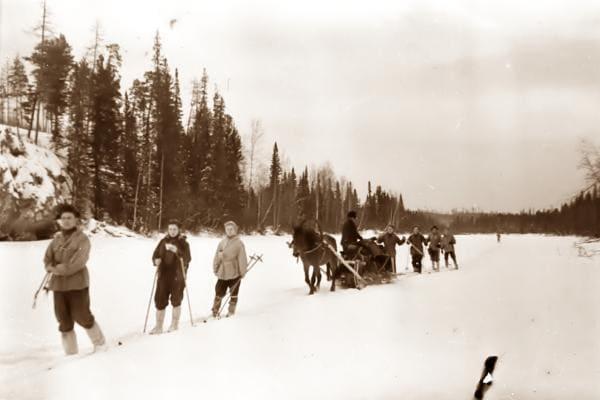 Дорошенко, Колмогорова, Дубинина, повозка и другие члены группы - на лыжне